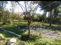 فروش زمین مسکونی با موقعیت عالی در شیپور-عکس کوچک