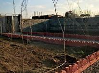 باغچه 300 متری در شهریار در شیپور-عکس کوچک