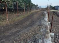 فروش زمین مسکونی ساحلی 1300 متری در شیپور-عکس کوچک