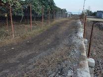 فروش زمین مسکونی ساحلی 1300 متری در شیپور