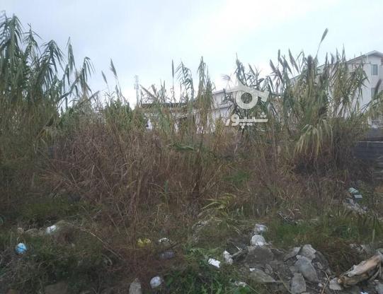 فروش زمین مسکونی 207 متر در سرخرود در گروه خرید و فروش املاک در مازندران در شیپور-عکس2