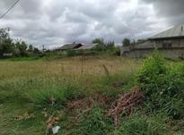 فروش زمین مسکونی 1000 متر در صومعه سرا در شیپور-عکس کوچک