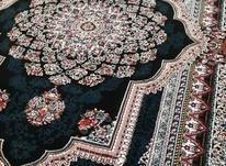 فرش کاشان اکبند 500 شانه و 700 شانه در شیپور-عکس کوچک