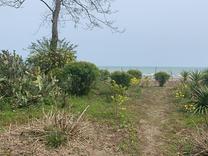 10 هزار متر زمین ساحلی کابین رامسر در شیپور