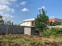 فروش زمین مسکونی 500 متر در نور در شیپور-عکس کوچک