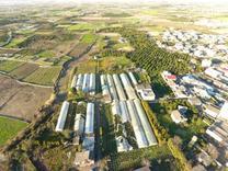باغ صنعتی  52500 متر در آمل  در شیپور