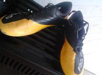 کفش ورزشی نو نو  در شیپور-عکس کوچک