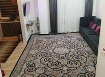 آپارتمان 51 متر امیرکلا خیابان ابن سینا  در شیپور-عکس کوچک