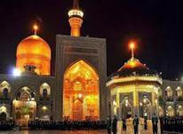 تور زیارتی سیاحتی مشهد مقدس در شیپور-عکس کوچک