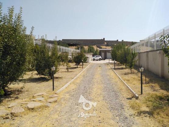فروش زمین مسکونی 600 متر در لواسان در گروه خرید و فروش املاک در تهران در شیپور-عکس1