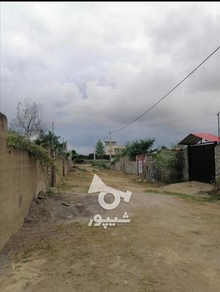 فروش 220 متر زمین مسکونی  در گروه خرید و فروش املاک در مازندران در شیپور-عکس1
