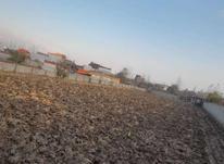 زمین باغی 18000 متر در آمل در شیپور-عکس کوچک