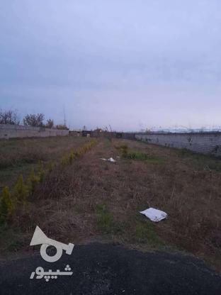 زمین مسکونی 1250 متر سند دار در آمل در گروه خرید و فروش املاک در مازندران در شیپور-عکس1