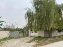 زمین مسکونی 1300 متر داخل بافت در آمل در شیپور-عکس کوچک