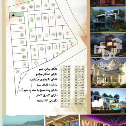 فروش زمین مسکونی 276 متر در نخ شمال در گروه خرید و فروش املاک در مازندران در شیپور-عکس1