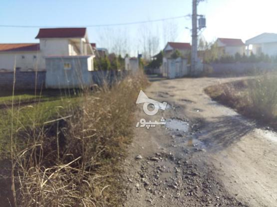 فروش زمین مسکونی 307 متر در چمستان در گروه خرید و فروش املاک در مازندران در شیپور-عکس1