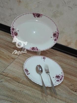 ارکوپال شش نفره در گروه خرید و فروش لوازم خانگی در البرز در شیپور-عکس2