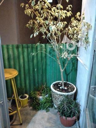 فروش آپارتمان 60 متر در بریانک در گروه خرید و فروش املاک در تهران در شیپور-عکس7