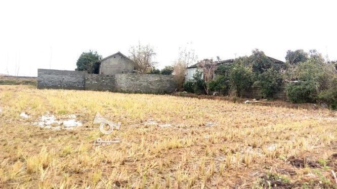 زمین مناسب ساخت شهرک در گروه خرید و فروش املاک در مازندران در شیپور-عکس1