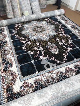 فرش کاشان 500 شانه اکبند در گروه خرید و فروش لوازم خانگی در تهران در شیپور-عکس4