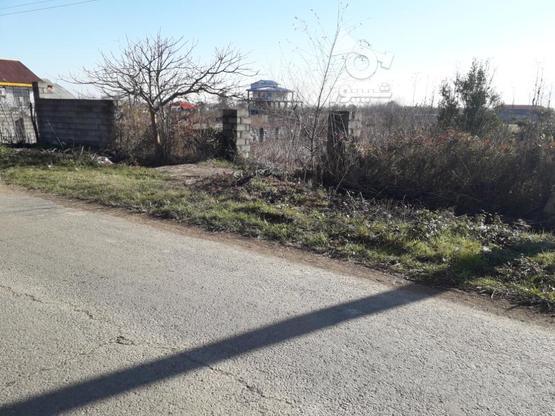 زمین مسکونی 413متری بامجوز ساخت در گروه خرید و فروش املاک در گیلان در شیپور-عکس3