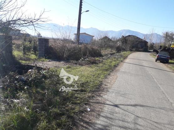 زمین مسکونی 413متری بامجوز ساخت در گروه خرید و فروش املاک در گیلان در شیپور-عکس4