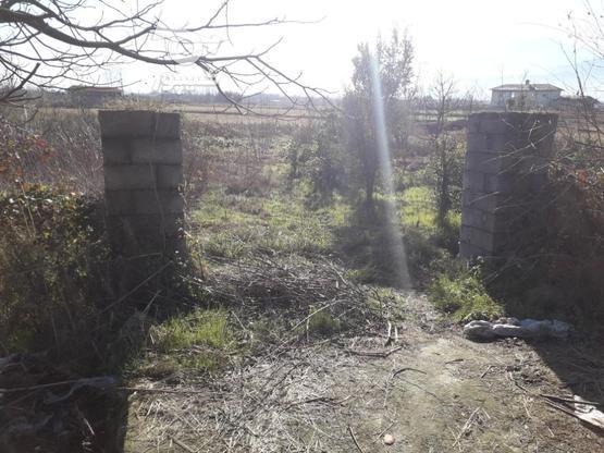 زمین مسکونی 413متری بامجوز ساخت در گروه خرید و فروش املاک در گیلان در شیپور-عکس8