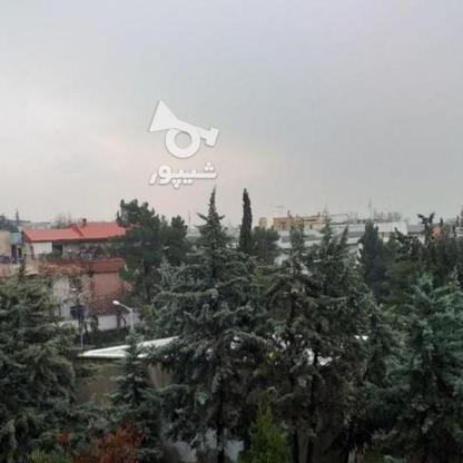 فروش آپارتمان 164 متر در شهرک غرب در گروه خرید و فروش املاک در تهران در شیپور-عکس1