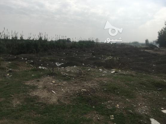 200 متر زمین ساحلی در منطقه ی چپکرود شهرک دامچی در گروه خرید و فروش املاک در مازندران در شیپور-عکس1