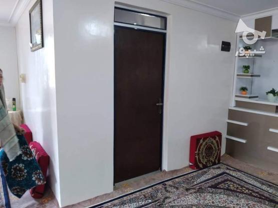 فروش ویلا 700 متر در رضوانشهر در گروه خرید و فروش املاک در گیلان در شیپور-عکس4