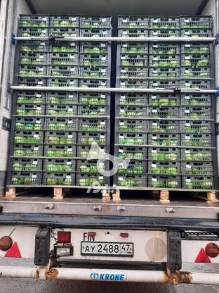 نبشی پلاستیکی بسته بندی پالت،تسمه بسته بندی ودستگاه تسمه کش در گروه خرید و فروش خدمات و کسب و کار در فارس در شیپور-عکس1