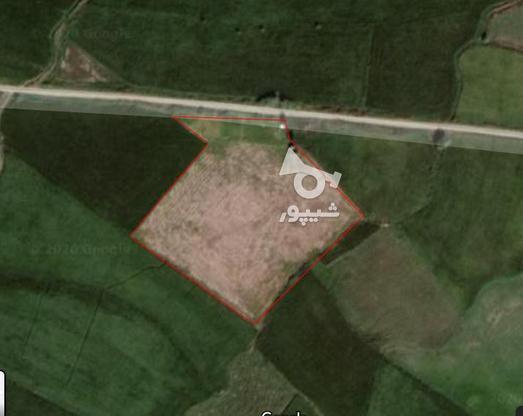 فروش زمین کشاورزی در گروه خرید و فروش املاک در مازندران در شیپور-عکس1