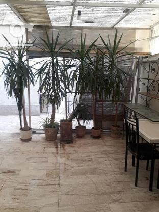101 متر 2 خوابه سهروردی_اندیشه (40متر پاسیو اختصاصی) در گروه خرید و فروش املاک در تهران در شیپور-عکس5