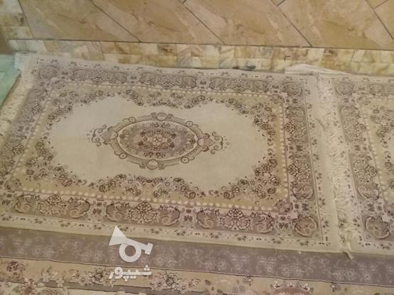 قالی وقالیچه در حد نو در گروه خرید و فروش لوازم خانگی در کرمان در شیپور-عکس3