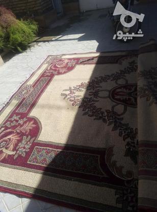 قالی سه در چهار در گروه خرید و فروش لوازم خانگی در خراسان رضوی در شیپور-عکس1