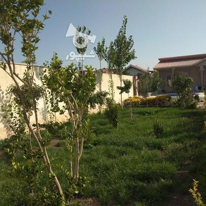 فروش ویلا 750 متر در چهارباغ در گروه خرید و فروش املاک در البرز در شیپور-عکس16
