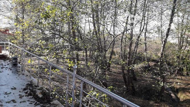فروش ویلا استخردار نوساز سه خواب متل قو در گروه خرید و فروش املاک در مازندران در شیپور-عکس7