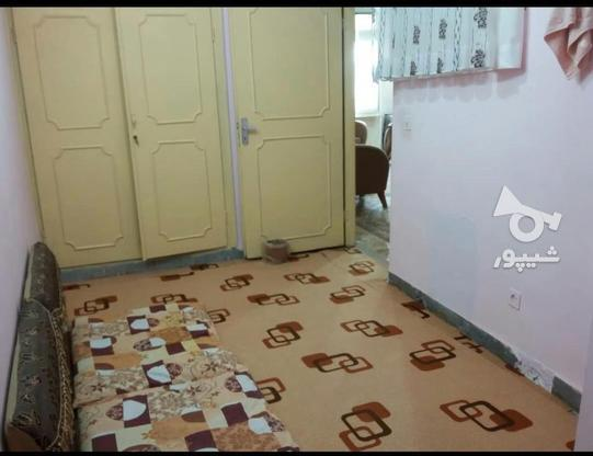 فروش آپارتمان 86 متر در آمل امام رضا در گروه خرید و فروش املاک در مازندران در شیپور-عکس4