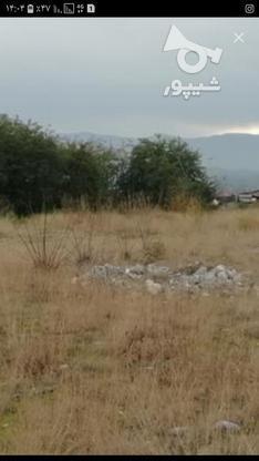 زمین 265 متری. چالوس. سند دار در گروه خرید و فروش املاک در مازندران در شیپور-عکس1