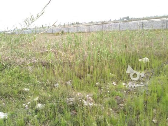 فروش زمین شهرکی مسکونی 298 متر در سرخرود در گروه خرید و فروش املاک در مازندران در شیپور-عکس1