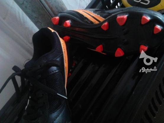کفش فوتبال نو نو  در گروه خرید و فروش ورزش فرهنگ فراغت در تهران در شیپور-عکس1