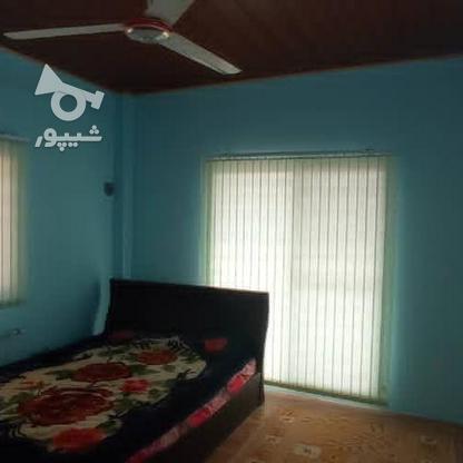 وزلا باغ ۴۰۰ومتری نیم پلوت دارای باغ مرکبات در گروه خرید و فروش املاک در مازندران در شیپور-عکس6