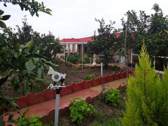 خونه باغ طلایی دارای آب برق گاز و گلهای زینتی، کروا در گروه خرید و فروش املاک در مازندران در شیپور-عکس6