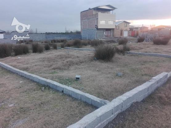 زمین با موقعیت مکانی عالی در گروه خرید و فروش املاک در مازندران در شیپور-عکس1