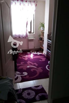 فروش آپارتمان 65 متر در استادمعین در گروه خرید و فروش املاک در تهران در شیپور-عکس3