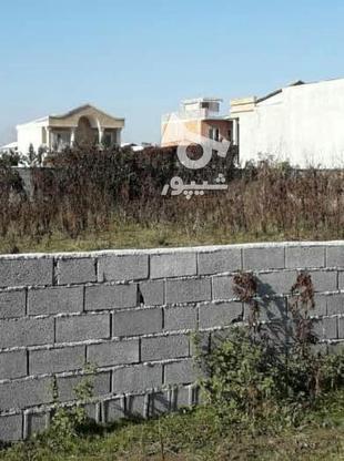 فروش زمین مسکونی 674 متر در آمل در گروه خرید و فروش املاک در مازندران در شیپور-عکس2