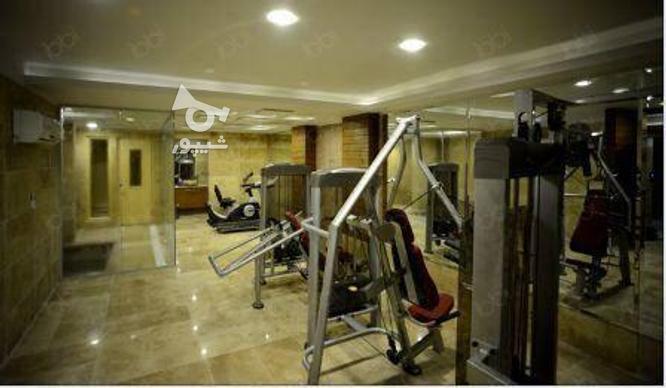 فروش آپارتمان 116 متر در زعفرانیه در گروه خرید و فروش املاک در تهران در شیپور-عکس5