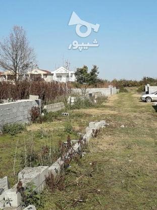 فروش زمین مسکونی 374 متر در آمل در گروه خرید و فروش املاک در مازندران در شیپور-عکس1