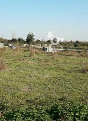 فروش زمین مسکونی 374 متر در آمل در گروه خرید و فروش املاک در مازندران در شیپور-عکس4