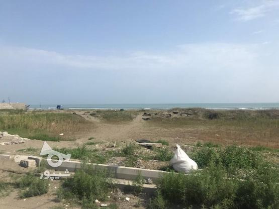 فروش زمین ساحلی 500 متری  در خ پاسداران در گروه خرید و فروش املاک در گیلان در شیپور-عکس1